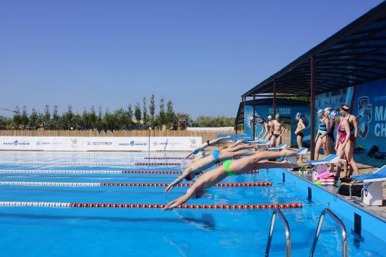 Открытый бассейн: все советы для летнего обучения